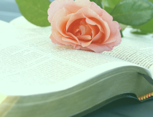 Bible Study of Philippians – Rejoice Always (Free Printable Study Guide)