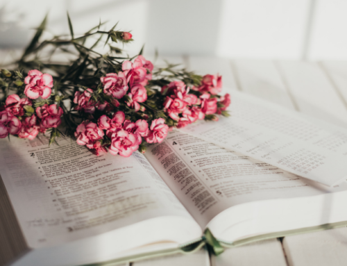 Ways to Memorize Scripture that Are Fun and Effective