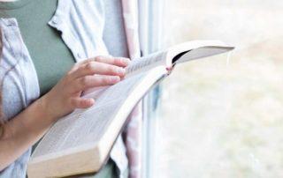 Best Bibles for Women
