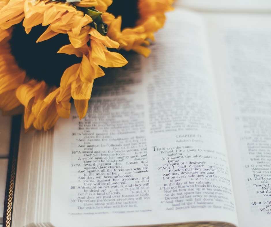 read the bible chronologically with yellow flowers