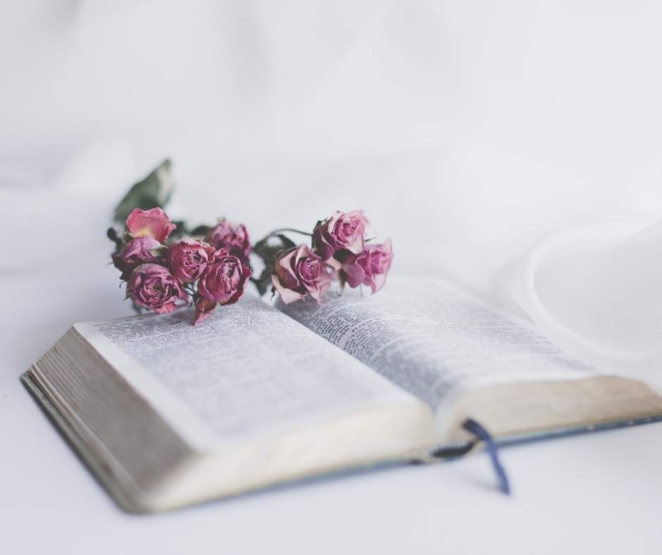 bible word study with flowers