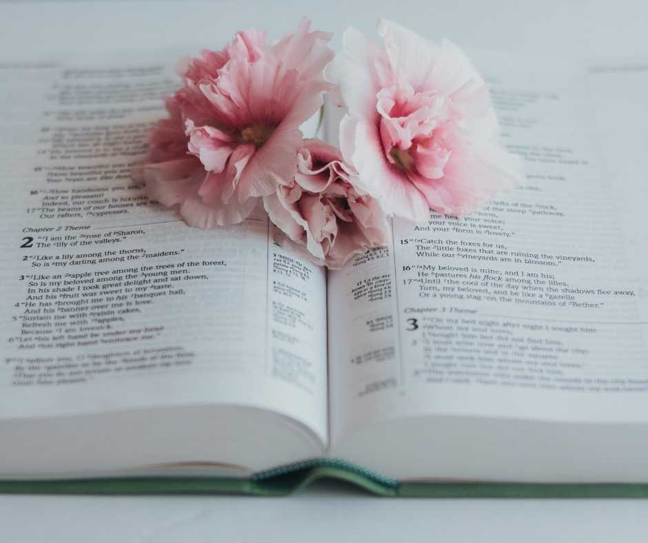 Bible with Pink flowers